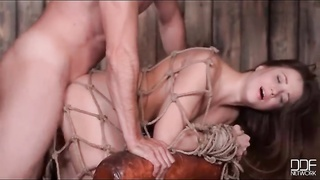 Babe tied up in rope and fucked in the ass Thumb