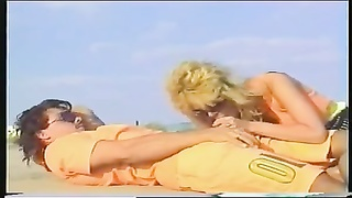 two couples for voyeurs on the beach Thumb