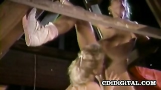 Erica Boyer & Alexa Parks - The Barnyard three-way Retro sex Thumb