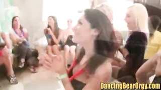 stiffy hungry Sorority ladies Blowbang Strippers - DancingBearOrgycom. Thumb