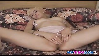 adorable  shorthaired yellow-haired jacks  in bed Thumb