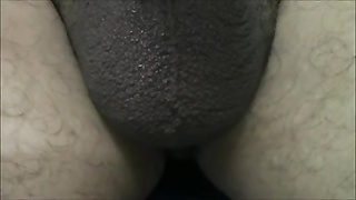 My small Mexican pecker up close Thumb