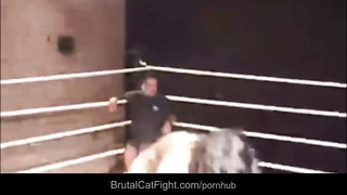 Catfight Casting bitches Thumb
