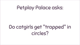 Meme Busting Catgirl in Circle BTS Petplay Palace Thumb