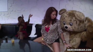 Sexy Dancing Bear being fucked big-breasted broad in exactly the mouth Thumb