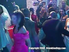 Astonishing drunk bitches are dancing in the night club Thumb