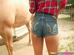 Attractive cowgirl swallowing farmer's huge dick in the barn Thumb
